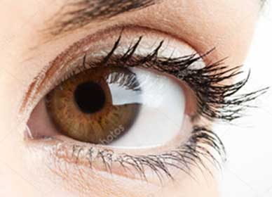 cirurgia-de-retina-foco-jpg-02