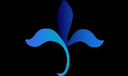 logo-superior